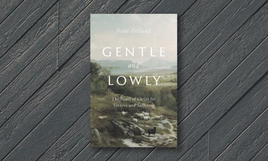gentlelowly